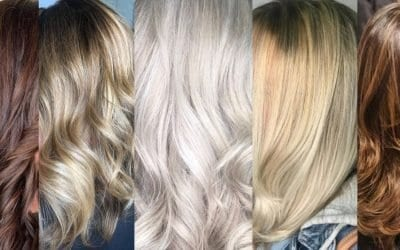 Experience the Beauty of Goldwell Color